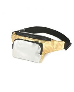 Gold and Silver Bum Bag